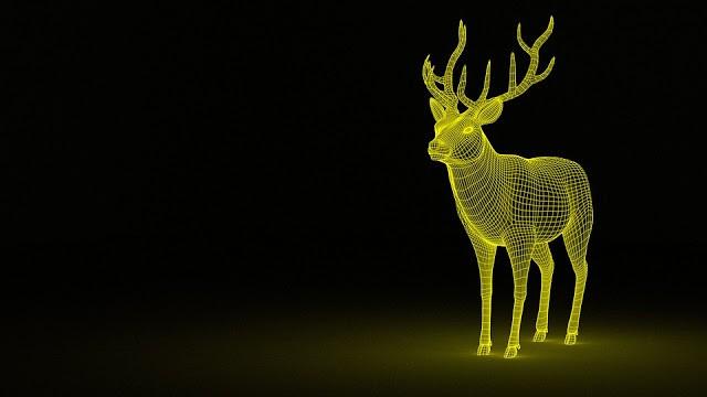 deer-1333814_960_720.jpg
